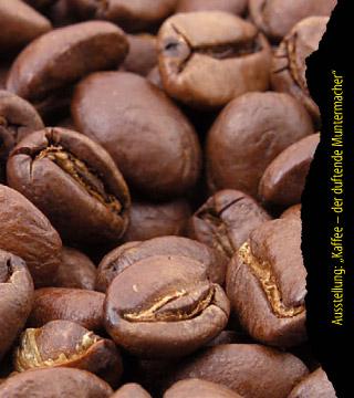 Kaffee – der duftende Muntermacher